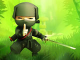 Ninja contre Pirates
